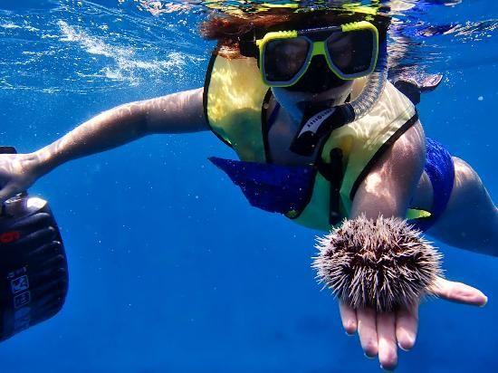 Aruba Bob Snorkeling (# 1 on TripAdvisor for Aruba Activities)