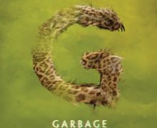 Garbage – Strange Little Birds (Stunvolume)