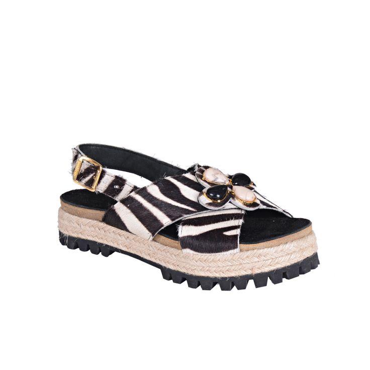 Zapatos | P702647