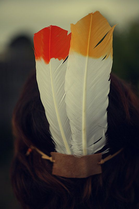 dipped feathers