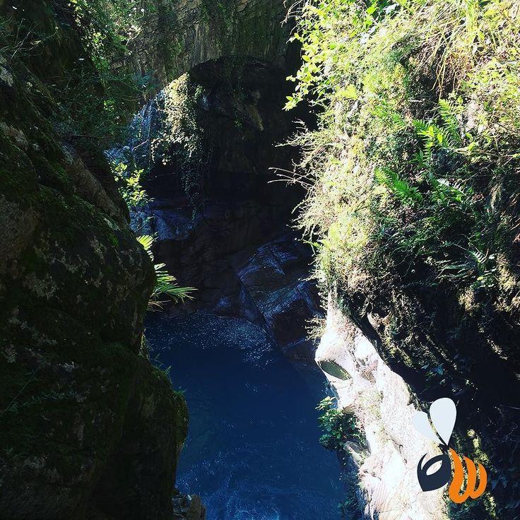 Magnifici scorci di natura in un freddo sabato mattina di gennaio! #nature #water #green #walking #passeggiata #natura #cascata #igersmilano #igerslombardia #agencylife #team #picoftheday #bestoftheday #phootoftheday #milan #milano #womboit