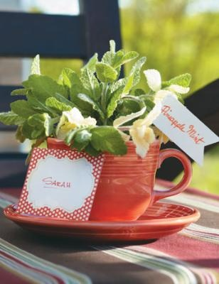 herbs in a tea cup and other cute garden gift ideasGrowing Herbs In Water, Gardens Gift, Teas Cups, Gift Ideas, Gardens Inside, Herbs Gardens, Grow Herbs, Teacups Plants, Herbs Teacups