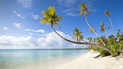 Wanna go scuba diving in Fiji? #KILROY