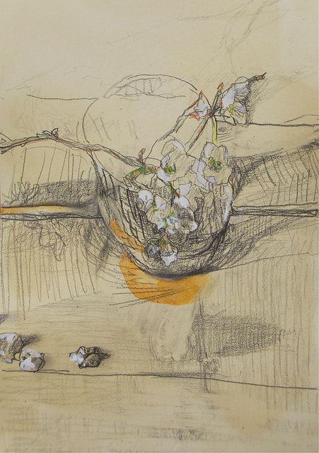 Still life drawing, branches of a Japanese plum in blossom, pencil, watercolour and coloured pencil on coffee-dyed paper  by Kouta Sasai