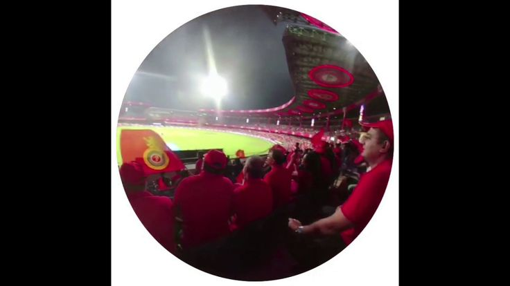Cricket in India: Fake merch, intense noise and heavy security. Here's a recap of the @IPL @RCBTweets #FanExperience