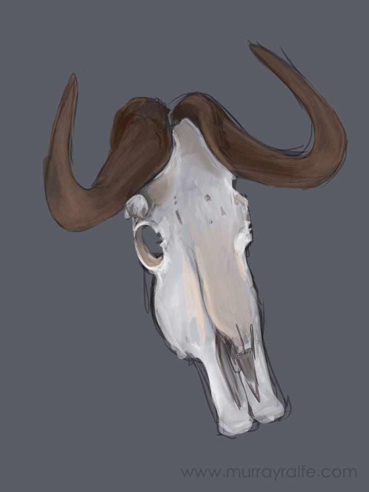 Black wildebeest skull, iPad sketch done at Samara private reserve Murray Ralfe www.murrayralfe.com