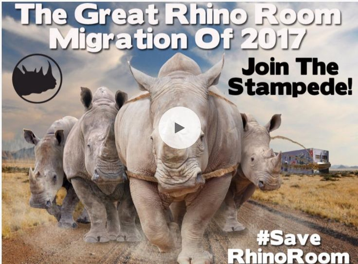 Comedy, music and visual art Let's help make a brand new start  Make a pledge today... https://pozible.com/project/the-great-rhino-room-migration  #SaveTheRhinoRoom