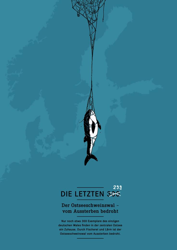 """Kreativwettbewerb zum Schutz der letzten Schweinswale - vom WDC  """"Die letzten 299"""" von Michael Stünzi, Wissenschaftlicher Illustrator, Zürich - Schweiz."""