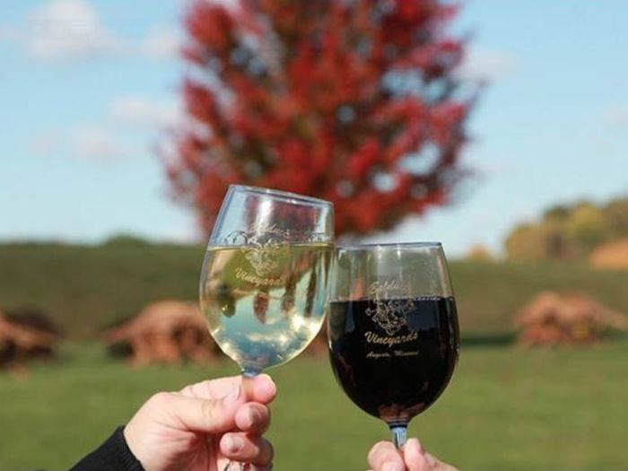 There's A Wine Trail In Missouri And It's Everything You've Ever Dreamed Of   Discover local wines!