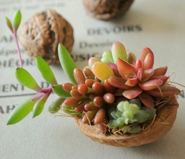 Щёлкаем орешки: скорлупа грецкого ореха как материал для вашего творчества - ЯМ