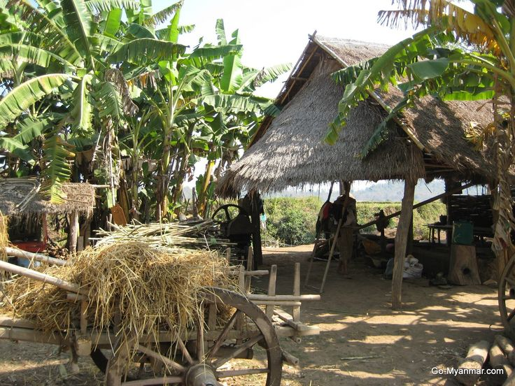 Farm near Hsipaw, Shan State, Myanmar (Burma). Go here for more information on Hispaw: www.go-myanmar.com/hsipaw-thibaw