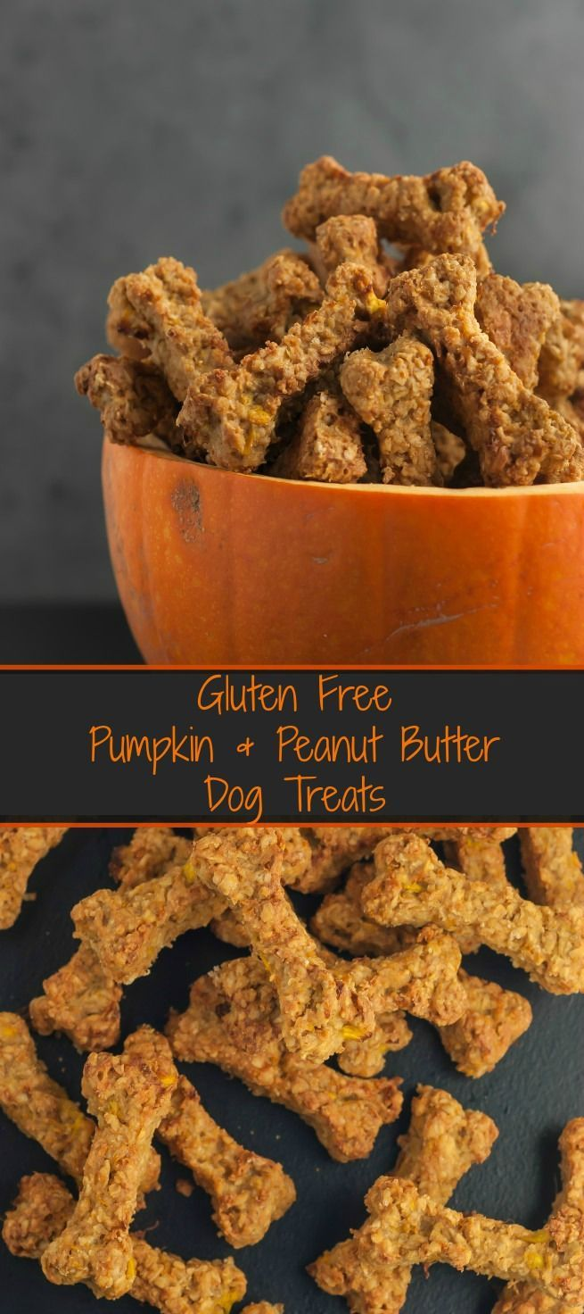Gluten Free Pumpkin & Peanut Butter Dog Treats Delicious homemade dog treats which are perfect for any pooch following a gluten free diet. Packed with goodness from oats and Greek yogurt they provide good nutrition and make for the perfect reward for any obedient dog.