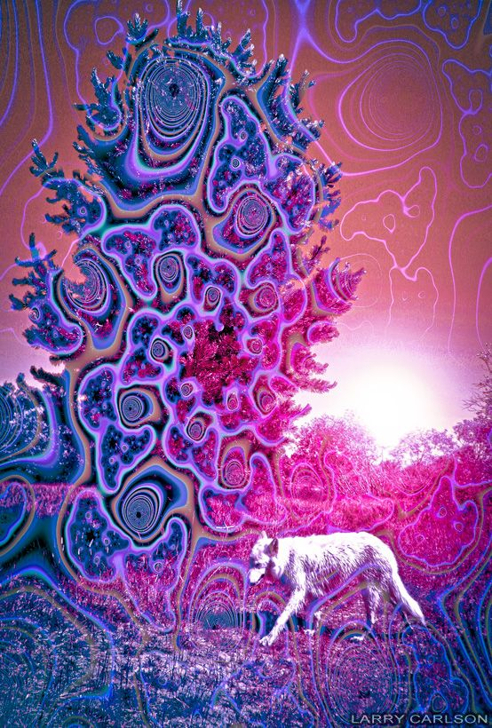 Larry Carlson - psychedelic art prints, trippy movies, collage artwork, and surreal art