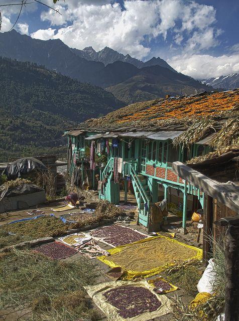 Bashisht, Himachal Pradesh, India