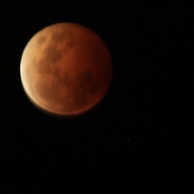 The blood moon as captured in the sky over Port Fairy last night - The Fountains Agency. #lunareclipse #bloodmoon
