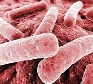 The site describes the symptoms and treatment of klebsiella pneumoniae bacterial infections. Contains a complete list of antibiotics. http://klebsiella-pneumoniae.org