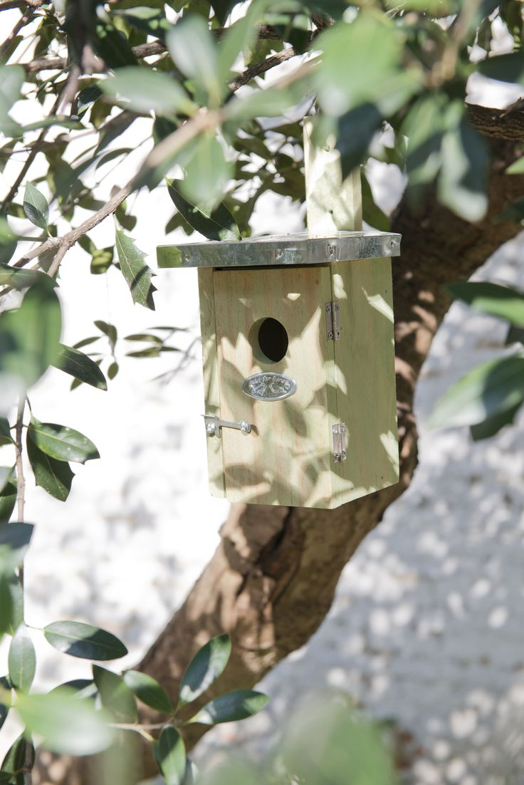 #birds #nestbox | Dille & Kamille