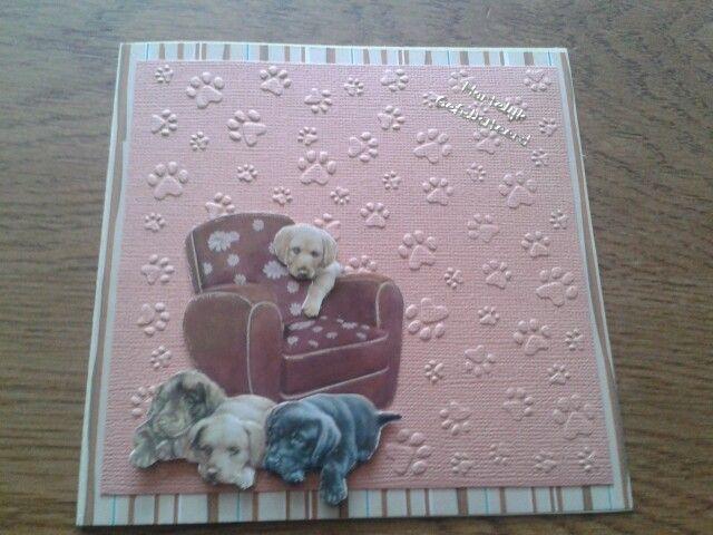 Hondenkaart