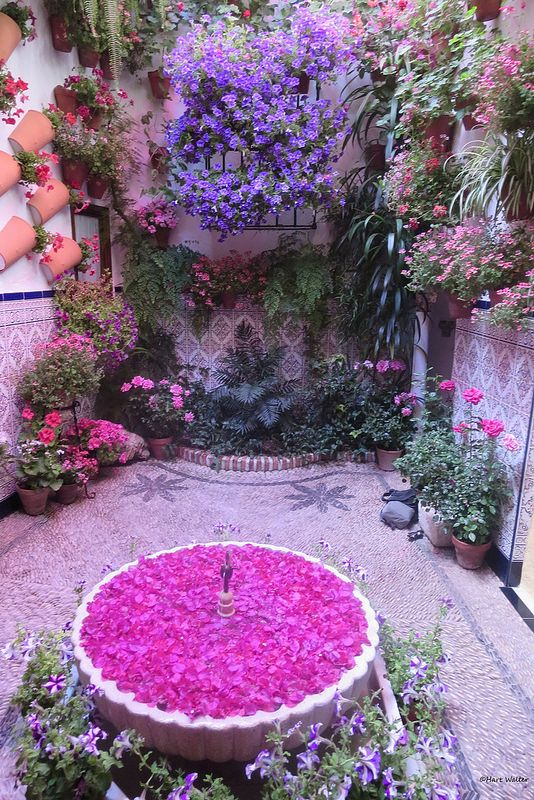 Cordoba, Spain - elegant house patio