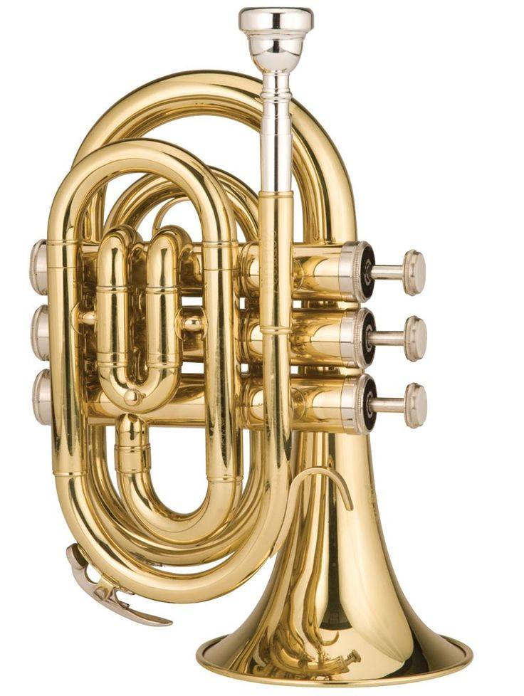 Ravel RPKT1 Pocket Trumpet and more Pocket Trumpets At Cascio Interstate Music