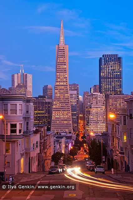 Transamerica Pyramid at Dusk, San Francisco, California, USA