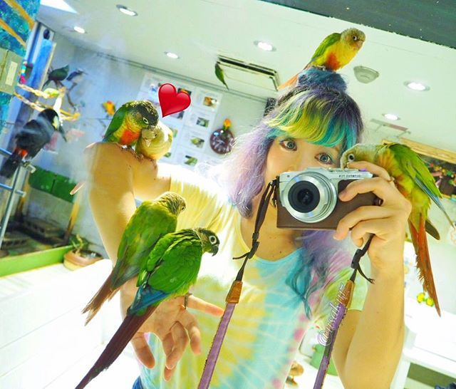 WEBSTA @ usak1117 - 鳥カフェでは、みんな私の腕で#イチャイチャ してたり#カメラ覗いて きたり#真っ先に 団子にとまってきたり 🐤✨**これはまだ、可愛いとき😂🙌笑**#鳥カフェ#浅草#鳥のいるカフェ#癒し#カラフル#コガネインコ#コガネメキシコインコ#잉꼬#귀여운#色キチガイ#dyehair#マニパニ#sunparakeet#parakeet#parrot#manicpanic#haircolor#colorful#colorfulhair##holiday#instagood#electricbanana#atomicturquoise#bird#OLYMPUS