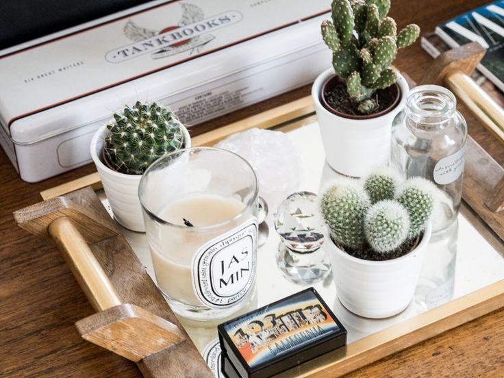 Cactus Succulents Diptyque Candle