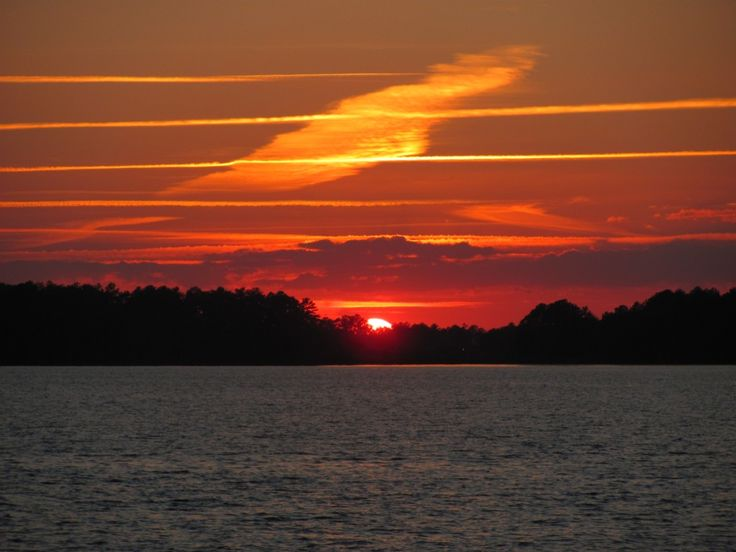 17 best images about lake murray sc on pinterest for Lake murray fishing hot spots