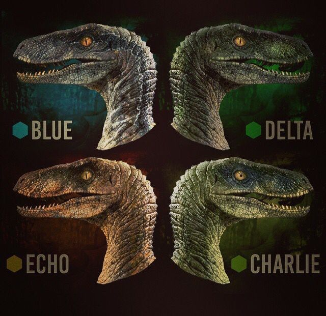 jurassic world fan... me: and that 1 there is blue, she the beta. kid: who's the alpha? me: you looking at her kid ;)