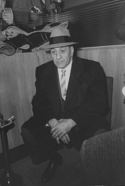 an analysis of the rise and fall of the chicago mafia family of al capone Organized crime in chicago: beyond the mafia the prohibition era in chicago al capone – a sicilian immigrant family which brought mafia traditions.