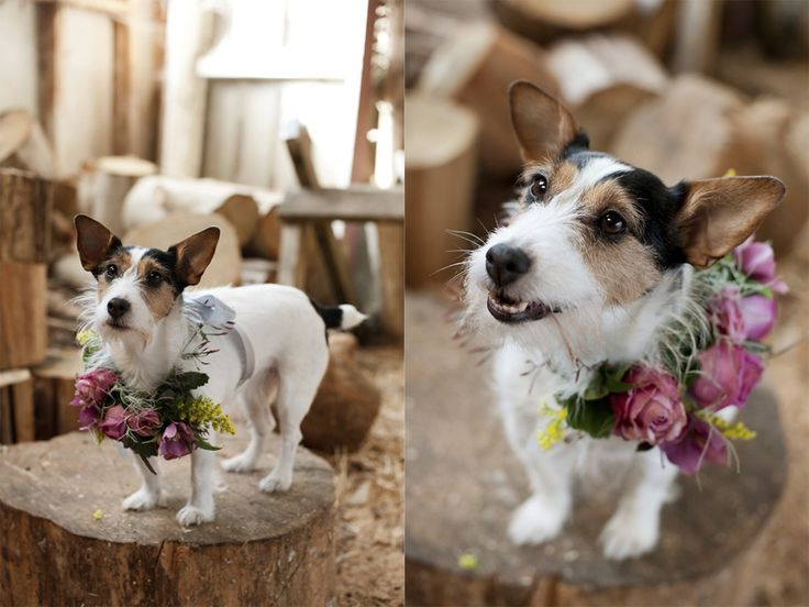 Florals & Styling  by Twig & Arrow  photos by Anna Munro
