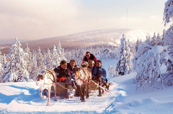 """Je verblijft deze week in het sfeervolle Ylläsjärvi Tunturi Hotel. Het hotel ligt dicht bij het meer en naast het op 3 na grootste Nationale Park van Finland. Het is kleinschalig met ca. 35 kamers, met een uitstekende -lokale- keuken. We hebben een actief en afwisselend programma, met van maandag t/m vrijdag dagelijks excursies, onder leiding van een ervaren gids. Hoogtepunt van de week is naast de husky safari, het ice-floating"""" in een wak in het meer en een bezoek aan het ijshotel!"""