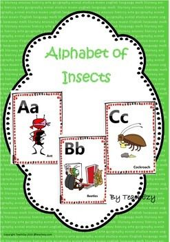 Alphabet with Insects