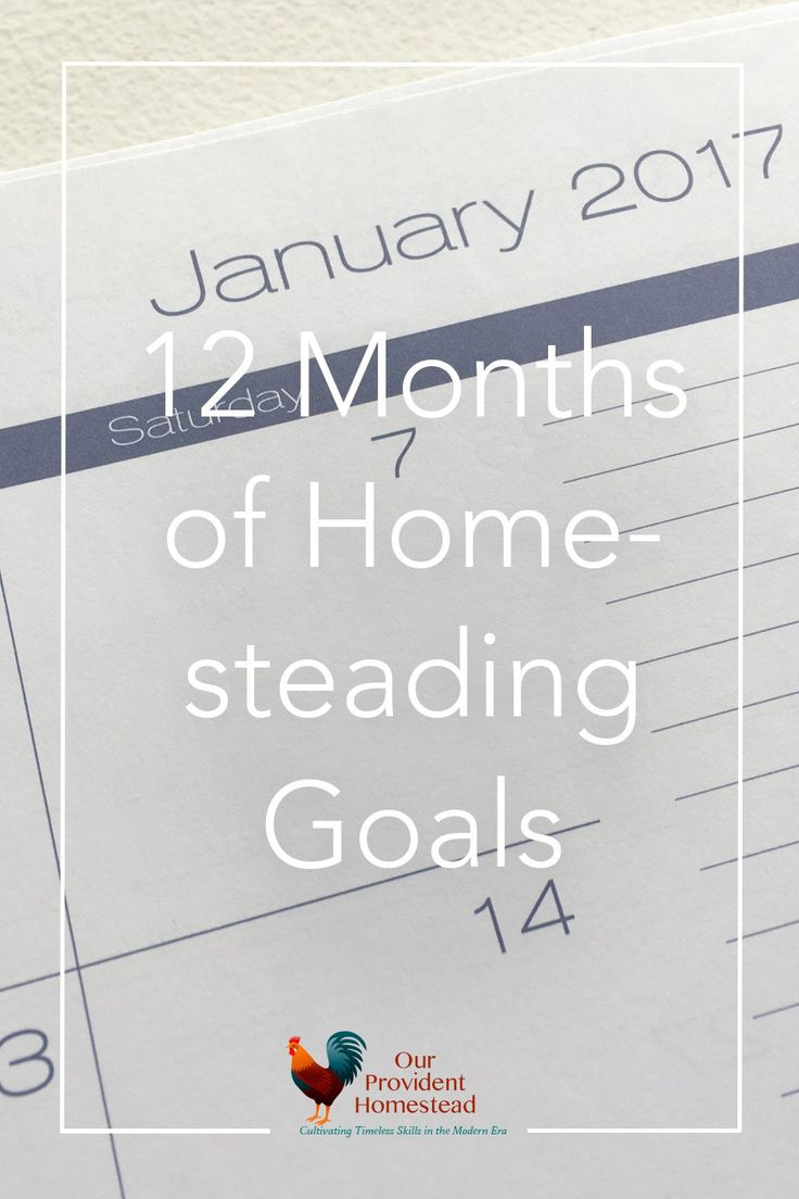 What are the goals you have for your homestead? Our homesteading goals this year are meant to keep us on track and productive throughout the year. Homesteading Goals | Productive Year | Goal Planning