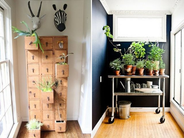 Put planters in drawers.: Cabinets, Libraries Cards, Indoor Plants9, Decor Ideas, Indoor Greenery, Plants Inspiration, Cute Ideas, Plants Life, Diy Home