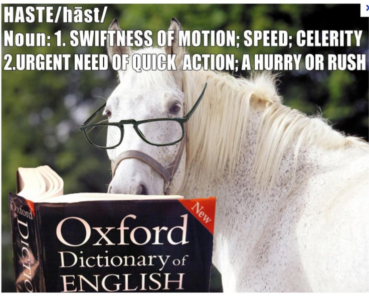 Shadowfax shows us the meaning of haste.