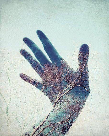 Si tocas una cosa con profundo estado de conciencia, tocas todo / If you touch one thing with deep awareness, you touch everything - Thich Nhat Hanh