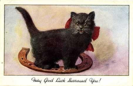 CatPostcards017s.jpg (453×292)