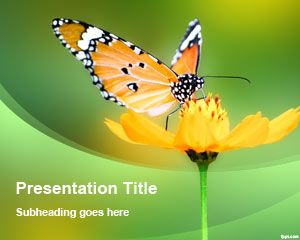 Free Flower Butterfly PowerPoint Template | Free Powerpoint Templates