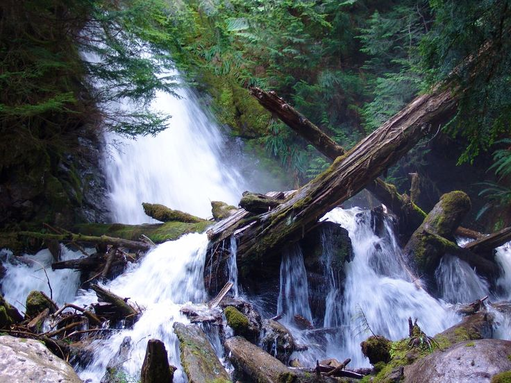 Cascade Logs by SHADOWMAC PHOTOGRAPHY on 500px