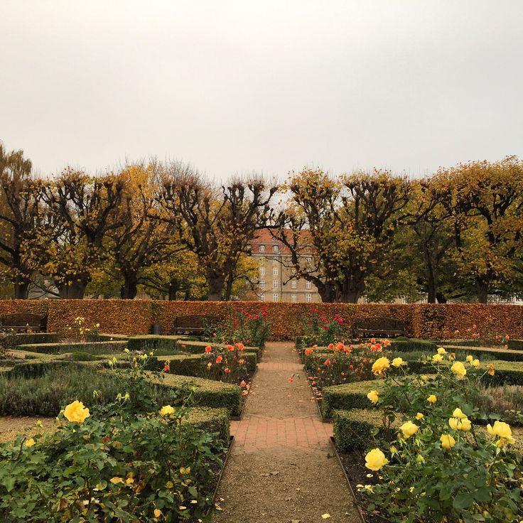 King's Garden, Copenhagen // 5 Fun & Free Things to do in Copenhagen