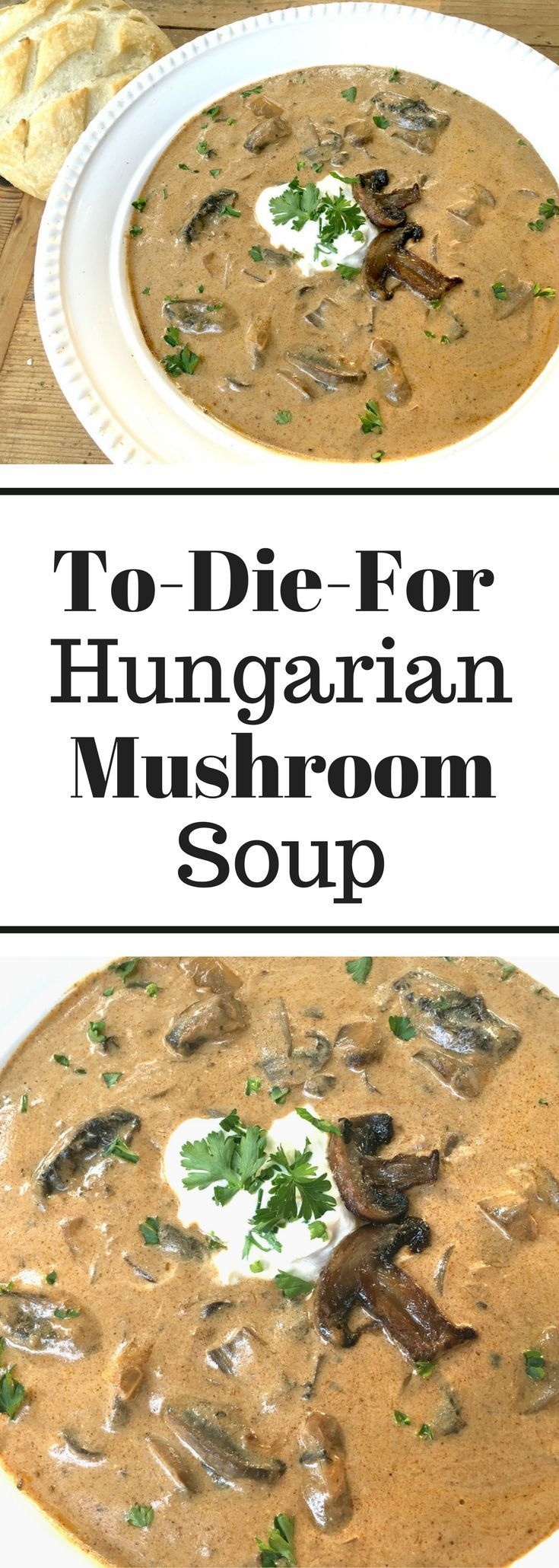To-Die For Hungarian Mushroom Soup - Delicious!