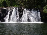 Coorg and Mysore 5 Nights Package