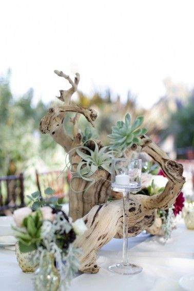 Driftwood, succulent, and air plant centerpiece  |  Melissa McClure Photography