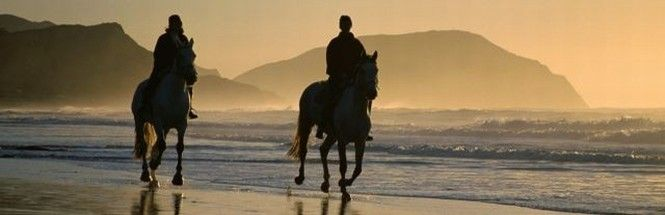 Horse-riding on Noordhoek Beach is one of the most popular activities for visitors and residents alike.  Surfing or kite-surfing are perennial favourites but for the less active a walk on the beach is a sought after activity.