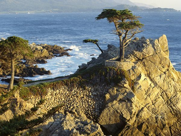 Take a day-trip down to Monterey, Carmel, and the 17-Mile Drive #california