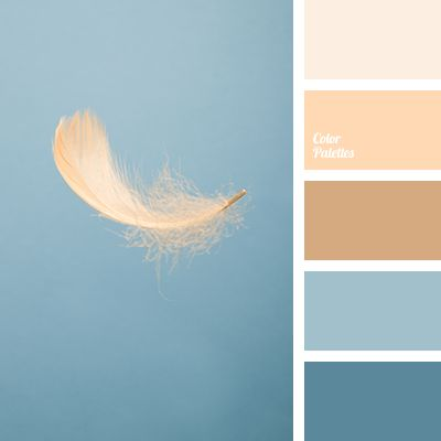 beige color, blue color, blue-gray color, coffee color, cream color, dark coffee color, gentle pastel colors, gray color