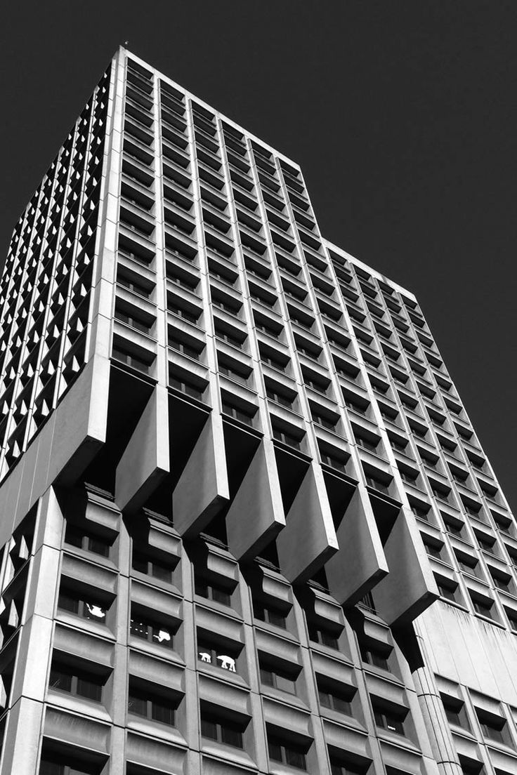 Sydney's standpoints shift as the city's Brutalist belles enjoy their deserved moment in the Australian sun...