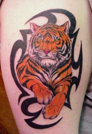 tatTattoo Ideas, 22 Beautiful, Tribal Tattoo Designs, Tribal Tattoos, Beautiful Tribal, Tiger Tattoo, Tattoo Possessive, Tigers Tattoo Design, Tattoo Studio