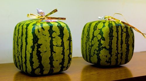 Grow a Square Watermelon! Seen this a few weeks ago...can't wait until summer so we can do this!!